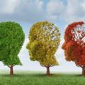 Mensen met dementie doen nog volop mee in Drenthe